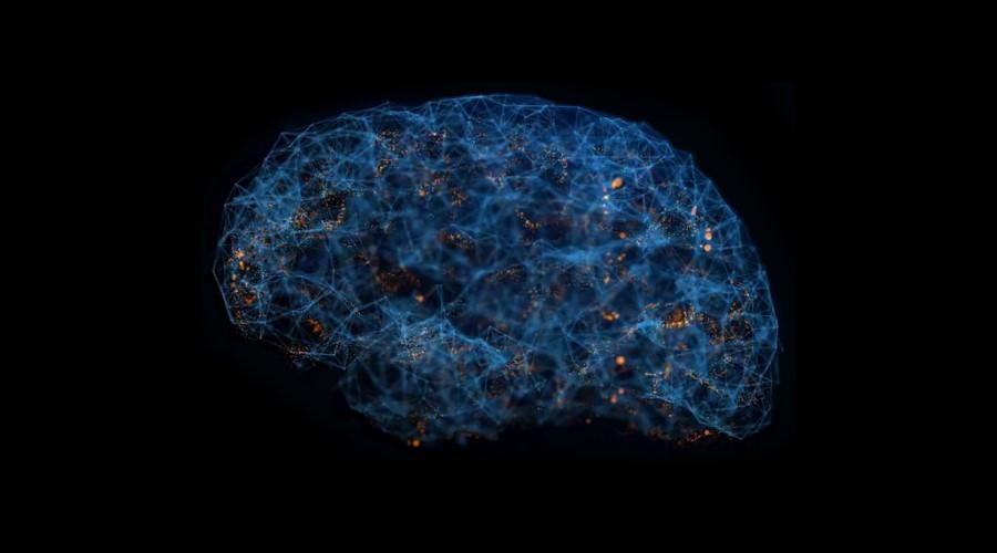 Brain Synapse image